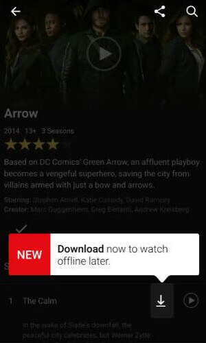 Download Netflix Movies to iPad & Android